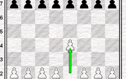 Chess First Moves