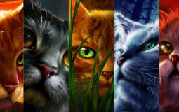 Cats from the Warriors Series