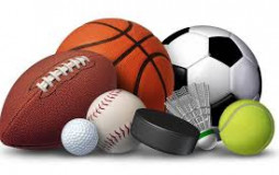 Sports to Watch