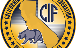 CIF sections